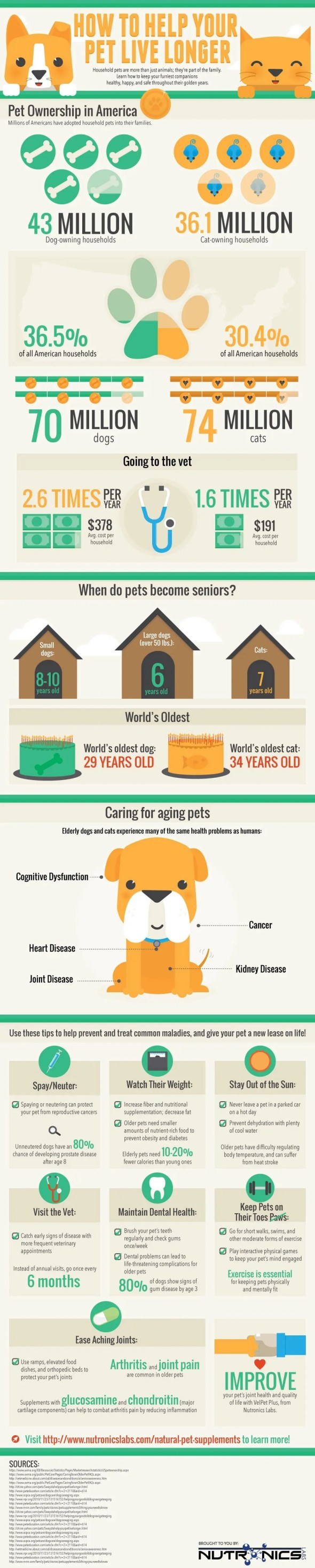 Infographic: How To Help Your Pet Live Longer