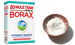 uses-for-borax-1