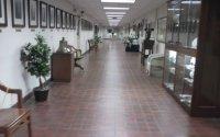 vista del pasillo y la exhibición