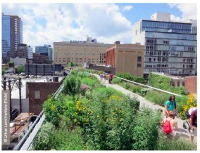 Retrofitting the city with nature: The High Line New York: this project captured the public's imagination and helped redefine and globally influence what urban green space can be; it demonstrates how quality city space can positively utilise obsolete city infrastructure and also how a project of this scale can be successfuly managed by the local community.