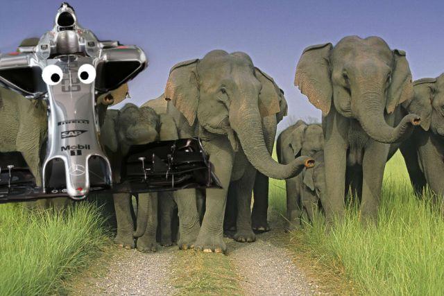 mclaren elefanti