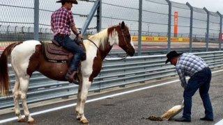 texas-austin-f1-cowboy