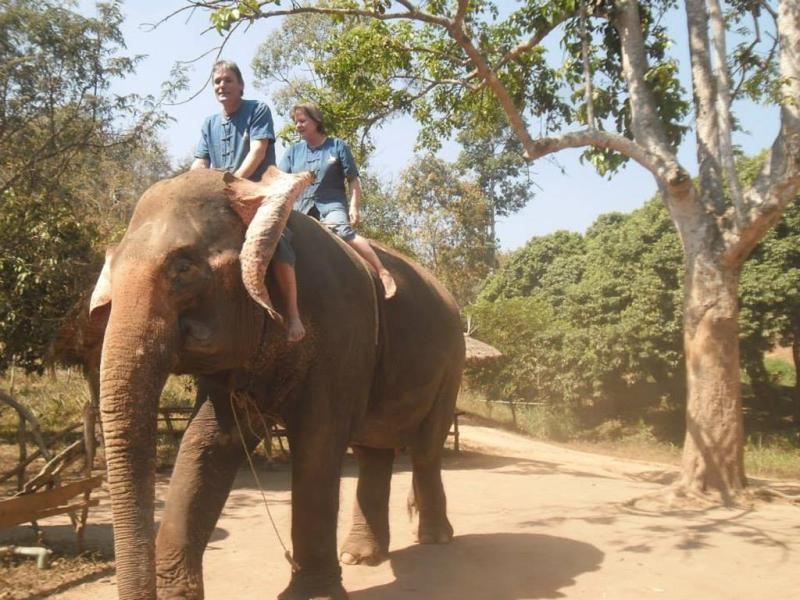 chiang mai, elefant reservat, thailand, ban chang