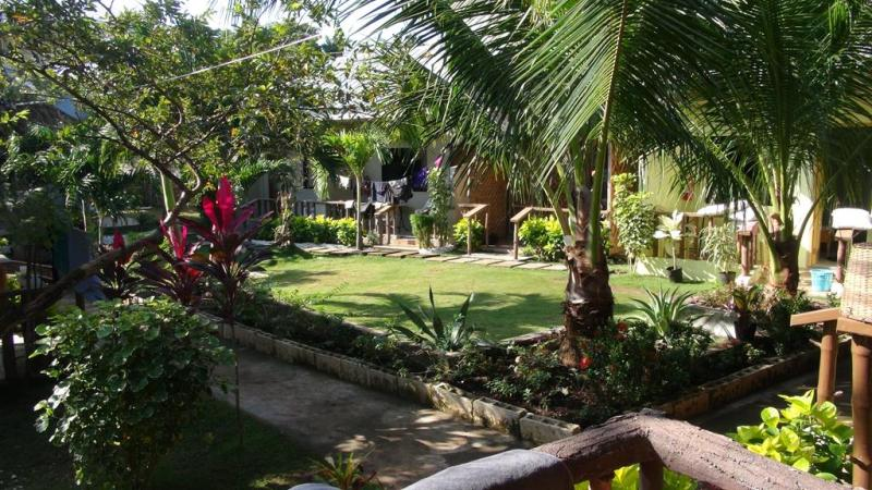 filippinerne, strand, palmer, backpacking, guesthouse, panglao