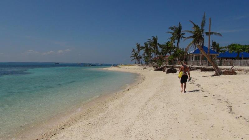 filippinerne, malapasqua, båd, strand, beach, palmer
