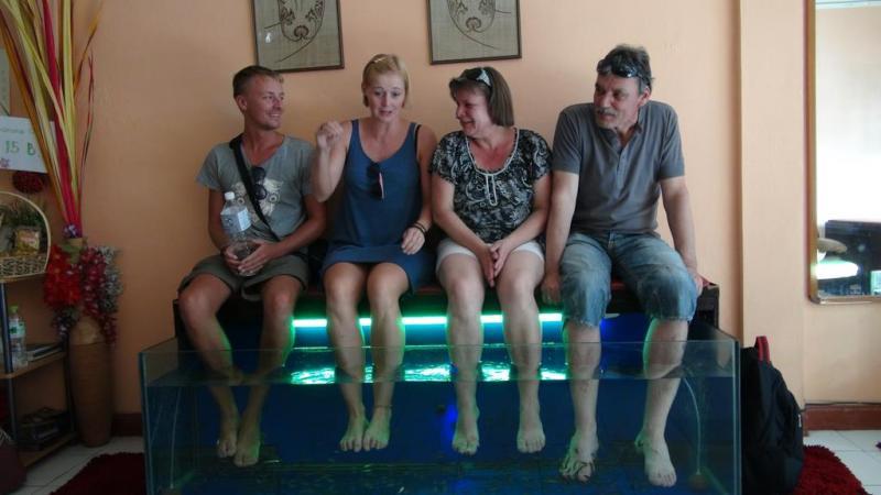 chiang mai, thailand, fiske spa