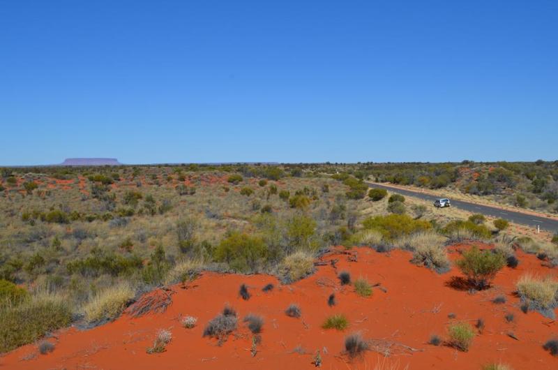 Fasineret af det røde sand…..det er ikke Uluru i horisonten, men Mount Connor