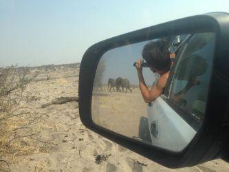7. Makgagikgadi National Park 1 (26)