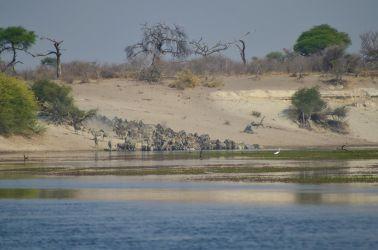 7. Makgadikgadi Pans National Park (95)