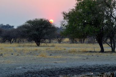 6. Central Kalahari Game Reserve (142a)