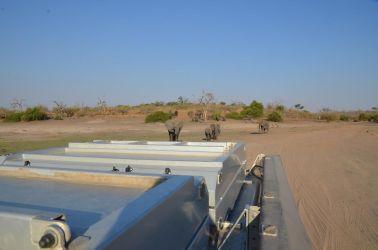 1. Chobe National Park 1 (73)