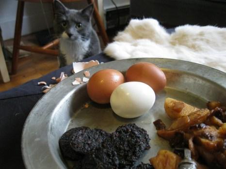 3-finger Hobb's Breakfast