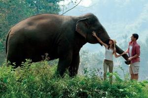 Offerte Viaggio - Thailandia & Cultura dell' Asia