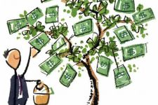 Picking From The Money Tree --- Image by © Images.com/Corbis