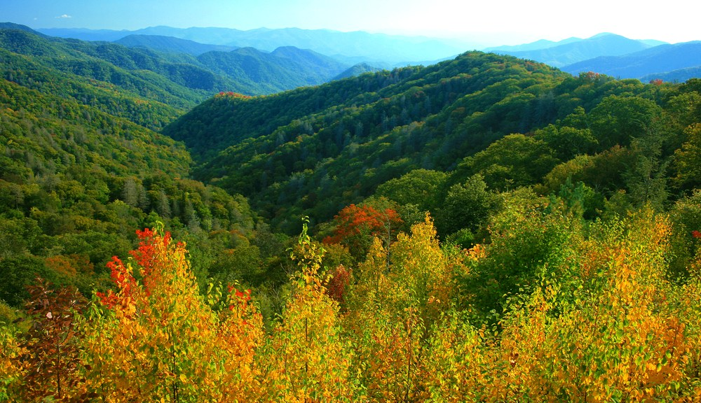 Fall colors in the Smoky Mountains