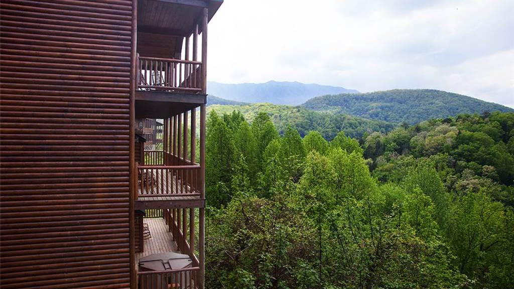 Mama Bear Gatlinburg Cabins Online places to stay in Galtinburg TN