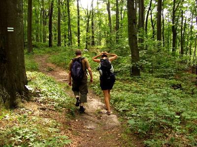 hikingsmokymountains
