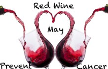 Antioxidant in Red Wine Found to Destroy Pancreatic Cancer Cells