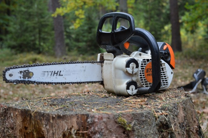 Tree Removal Tips