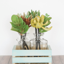 Succulent-Centerpiece-in-painted-wooden-crate