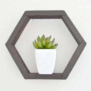 DIY Hexagon Popsicle Shelf | Fox Den Feature