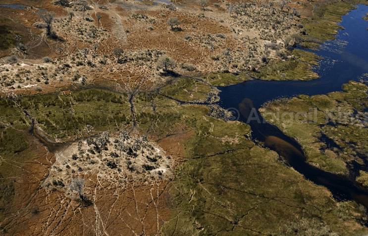 The Okavango Delta from the air by @insidetravellab