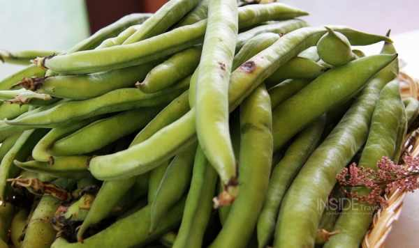 Slow food - fresh green beans from Umbria, Italy from @insidetravellab