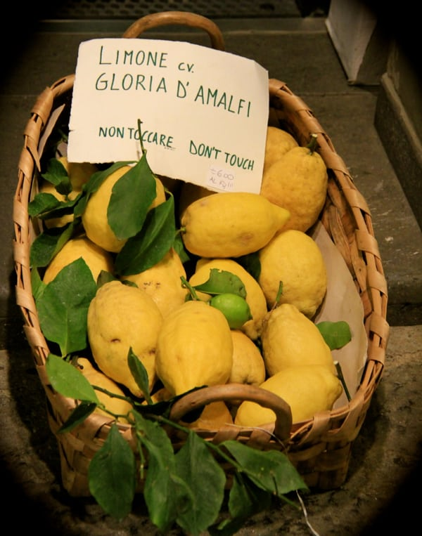 Lemons in basket Amalfi