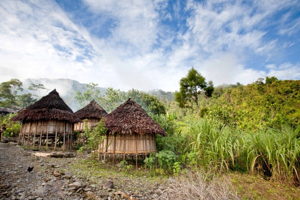 A traditional mountain village in Papua, Indonesia. shutterstock_25286221