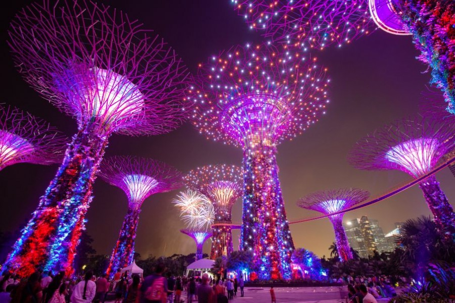 Immerse in a Garden Rhapsody of music and lights