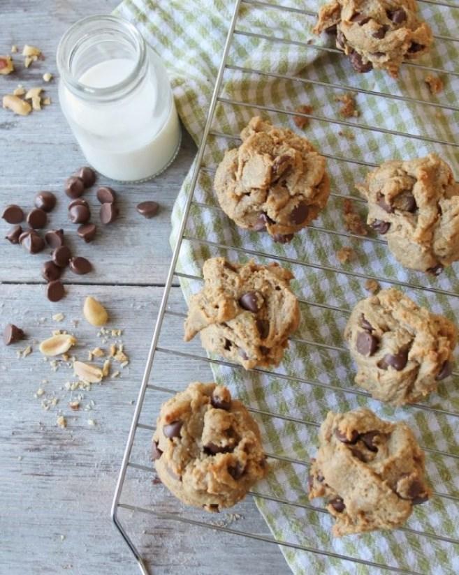 flourless peanut butter chocolate chip cookies (GF, DF)