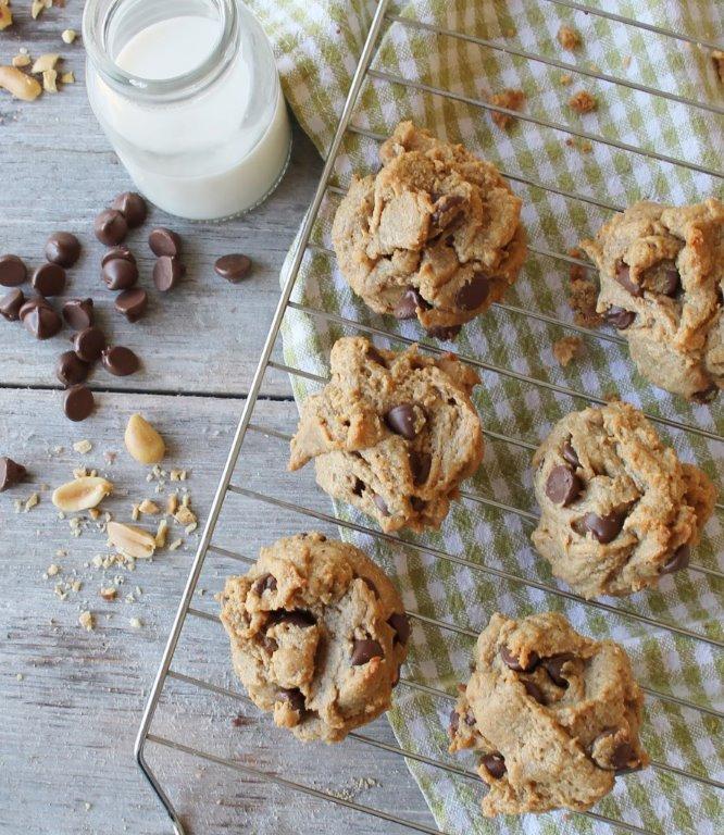 flourless peanut butter chocolate chip cookies (Gluten Free)