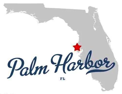 Palm Harbor Car Insurance