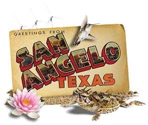 San Angelo Car Insurance