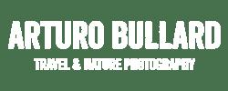 arturo-bullard-logo