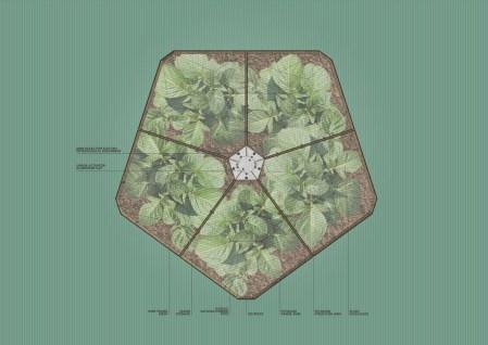 HortummachinaB_1200px_drawing_garden_plan