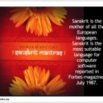 Indias_Gift_to_the_world0017