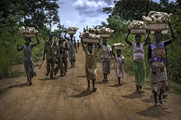 Ghana%20Yam%20Farming.jpg