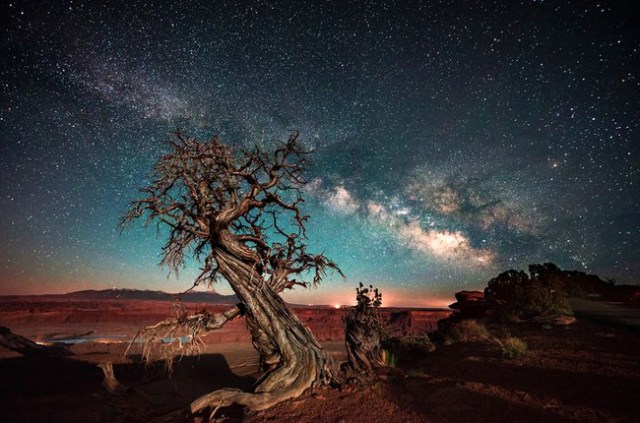 Dead Horse Point at Night