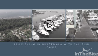 Video: Sailfish Oasis Produced This Guatemala Action
