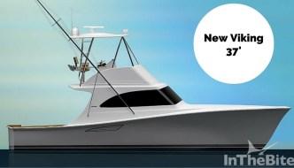 Viking's New 37
