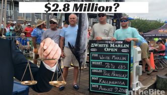 Judge To Decide White Marlin Open $2.8 Million Winnings