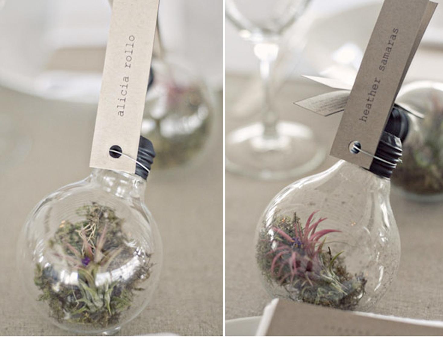 botanical favors and decor succulent wedding favors diy succulent ornament light bulb wedding favor