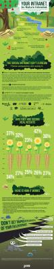 Jive Social Intranet Infographic