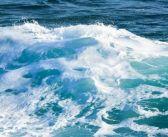 La energía limpia más poderosa: CETO y el movimiento de los océanos.