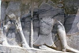 representaci%C3%B3n de Oannes 2 - Apkallus o Anunnakis los antiguos dioses sumerios