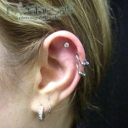 Cartilage Piercings Various INVSELF20
