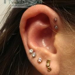 Cartilage Piercings Various INVSELF25