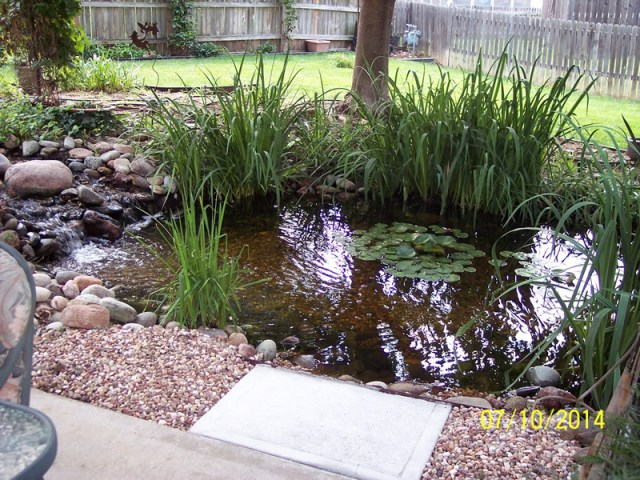 How Much Does a Pool Cost? 90 Real World Examples   INYOPools.com