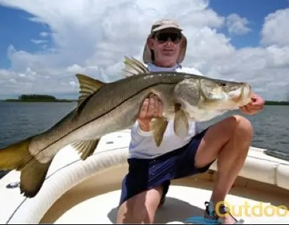 Fishing in cape coral florida cape coral fishing for Cape coral fishing charters